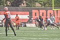 2016 Cleveland Browns Training Camp (28614337421).jpg