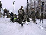 2016 US Army Alaska Winter Games 160127-A-CP861-600.jpg