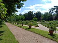20180615 Jardins dans le château de Malmaison.jpg