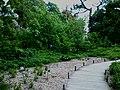 2019-05-14 - Аптекарский огород - Фото 1.jpg