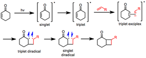 2+2 photocycloaddition