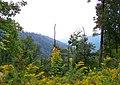 3, WV, USA - panoramio - Idawriter (8).jpg