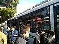 71路在延安东路西藏中路站点载客.jpg