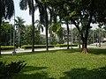 71Mehan Garden Ermita Manila Universidad de Manila 46.jpg