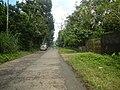 9501Poblacion Del Carmen, Alaminos, Road 16.jpg