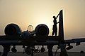 A-10 Thunderbolt IIs fly daily strike missions in support of OIR 141117-F-NJ768-377.jpg