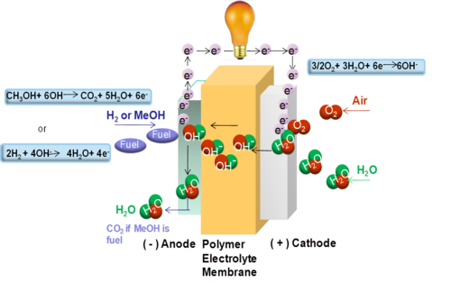 Alkaline Anion Exchange Membrane Fuel Cell Wikipedia