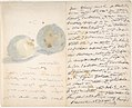 A Letter to Eugène Maus, Decorated with Two Plums MET DP807589.jpg