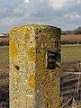 A lichen-covered gatepost - geograph.org.uk - 1169965.jpg