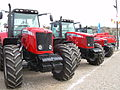 A line of red Massey Ferguson tractors.jpg