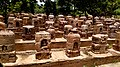 A lot of stupa at ratnagiri.jpg