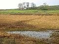 Abandoned cottage on Lismore - geograph.org.uk - 602235.jpg