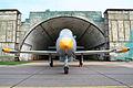 Aero L-39C Albatros 0113 (8216540430).jpg