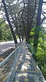 Agoy, Krasnodarskiy kray, Russia, 352830 - panoramio (7).jpg