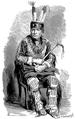 Aimard - Les Chasseurs d'abeilles, 1893, illust page 345.png
