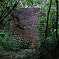 Air shaft of Bletchingley Tunnel - geograph.org.uk - 206453.jpg