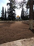 Alaqsa mosque0001 23.jpg