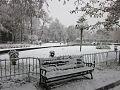 Aleppo Public Park view 2012 January-c.jpg