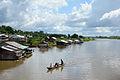Amazonas, Iquitos - Leticia, Kolumbien (11473071826).jpg