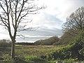 An area of poorly drained land opposite Llanfaelog Parish Church - geograph.org.uk - 1049925.jpg