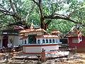 Ananda Bodhi Viharaya - panoramio (5).jpg