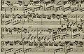 Andante du celébré Haydn - arrangé pour la harpe avec accompagnement de violon ad libitum (1795) (14782447554).jpg