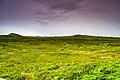 Anse aux Meadows, Newfoundland. (26493555417).jpg