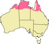 Distribución del walaró antílope
