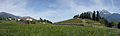 Aosta - field.jpg