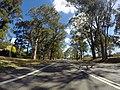 Appin NSW 2560, Australia - panoramio (28).jpg