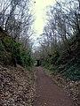 Approaching Bridgnorth Road - geograph.org.uk - 1303843.jpg