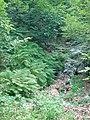Apriltzi, Bulgaria - panoramio (9).jpg