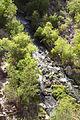 Aravaipa Canyon Wilderness (15411584715).jpg