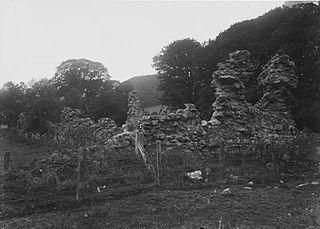 Archaeological ruins,Abbeycwmhir