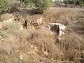 Ashkelon national park AS15.JPG