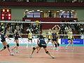 Asystel Volley Novara 1.jpg