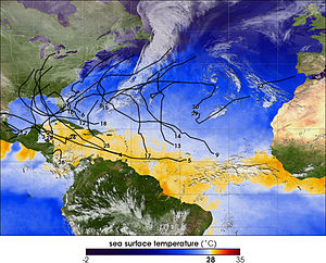 Sea surface tempreatures during the 2005 Atlan...