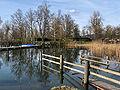 Auslikon - Strandbad - Robenhuserriet IMG 5438.jpg