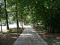 Azalea City Trail 8.jpg
