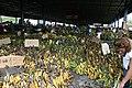 BANANAS - panoramio.jpg