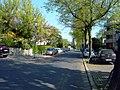 Bad Nauheim, Burgallee - geo.hlipp.de - 18369.jpg