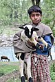 Bakarwal boy with goat.jpg