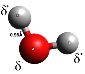 Intramolecular force - This is a ball and stick model of a water molecule. It has a permanent dipole pointing to the bottom left hand side.