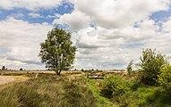 Balloërveld, natuurgebied in Drenthe 001.jpg