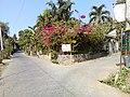 Barangay's of pandi - panoramio (109).jpg