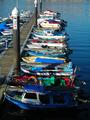 Barcos Marín 2006.png