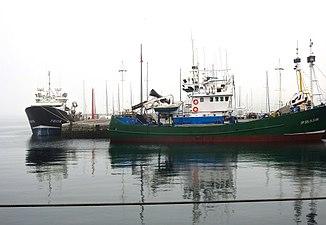 Barcos amarrados en Getaria.jpg