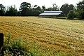 Barn and barley field at Scarawalsh Bridge - geograph.org.uk - 1458517.jpg