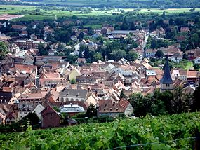 Barr coteaux panorama.JPG