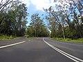 Basin View NSW 2540, Australia - panoramio (4).jpg